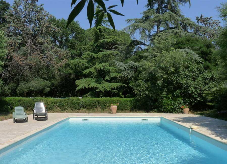 Grande piscine 10 x 15m